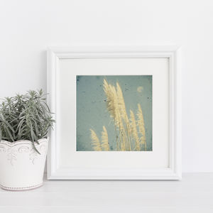 Breeze Photographic Print