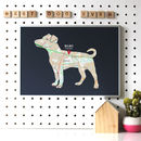 Personalised Map With Jack Russell Terrier