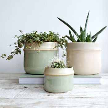 Soft Green Or Rosa Matt Beige Stoneware Pot