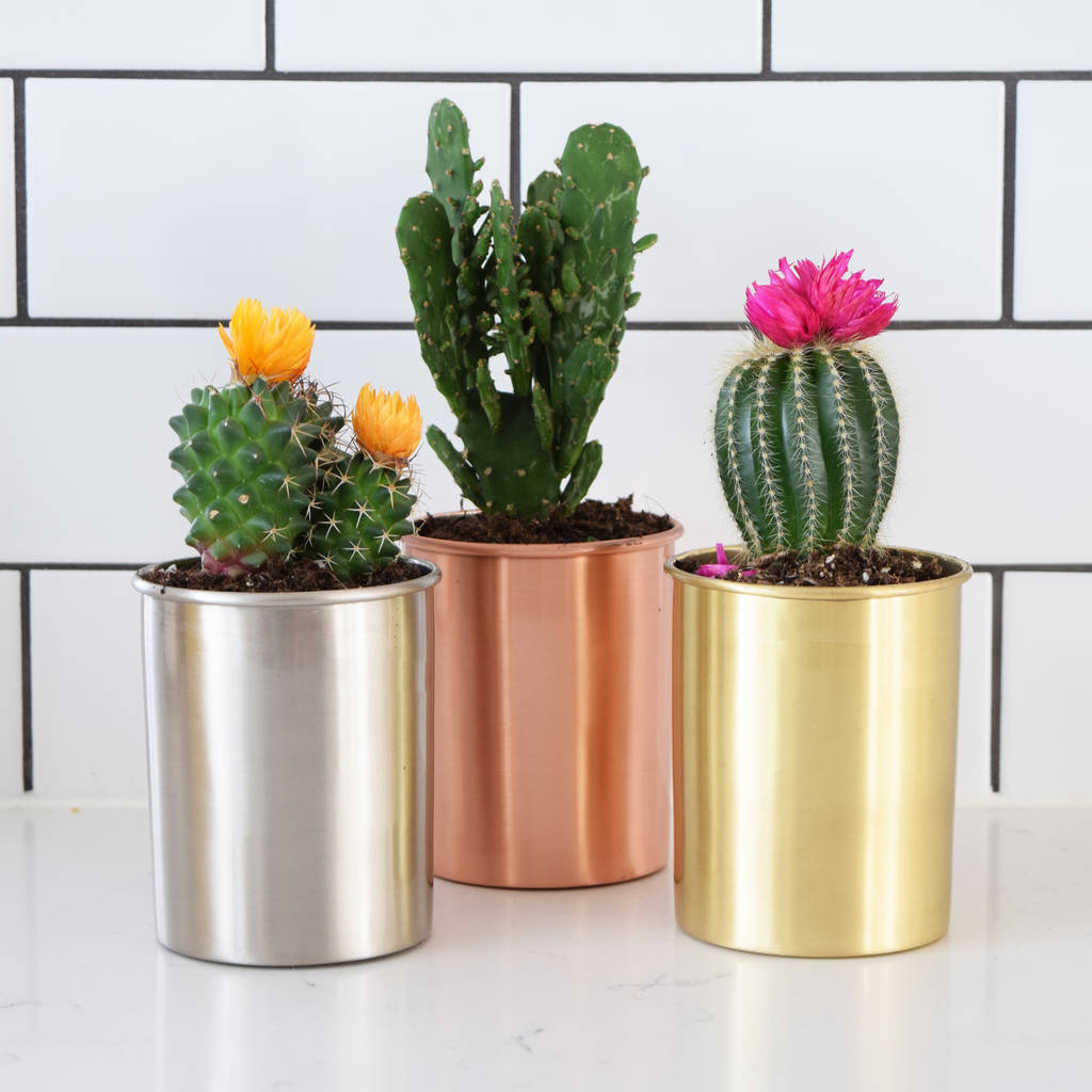 Modern Copper Gold And Silver Indoor Planter Pots