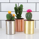 Modern Copper, Gold And Silver Indoor Planter Pots