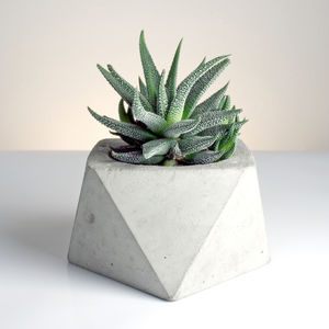 Square Antiprism Geometric Concrete Planter - home accessories