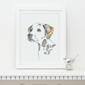 Dalmatian Fine Art Print - pet portraits