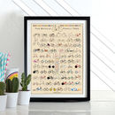 The Bicycle Family Tree Bike Poster Wall Art Print