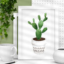 Green Watercolour Cactus Illustration Print