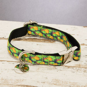 The Alderley Green Pineapple Dog Collar - dogs