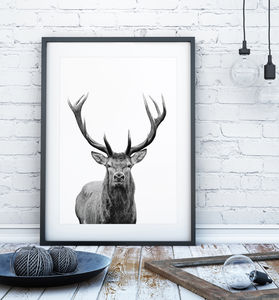Contemporary Black And White Stag Print - posters & prints