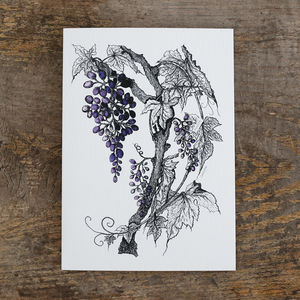 Grapevine Greetings Card