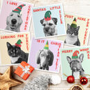 Christmas Pets Dogs And Cats Card Pack