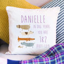 Personalised 'How Old Are You In Dog Years' Cushion