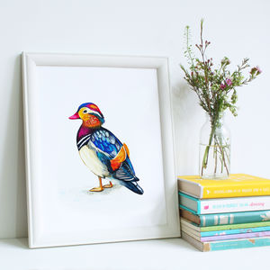 Mandarin Duck Illustration Print - paintings
