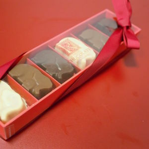 Sea Salt Caramel Chocolate Elephants Box Of Six - novelty chocolates