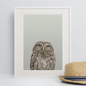 Woodland Owl Peekaboo Animal Print - animals & wildlife