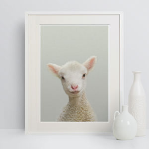 Nursery Pictures Lamb Peekaboo Animal Print - animals & wildlife