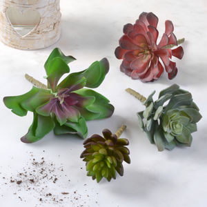 Faux Succulents - flowers