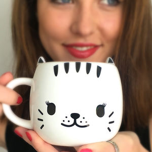 'Crazy Cat Lady' Mug - pet-lover