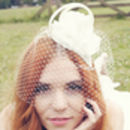 So Simple Bird Cage Veil