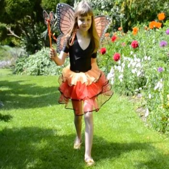 Butterfly Fairy Costume: Age 3+