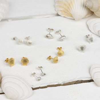 Silver Seashell Stud Earrings