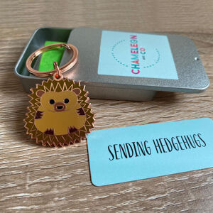 Sending Hedgehugs Keyring Gift For Friend