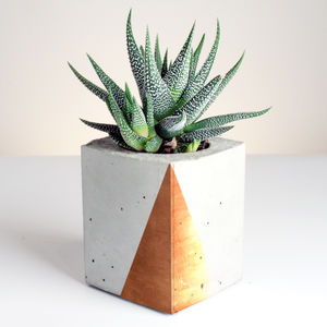Rectangular Concrete Planter With Copper Detailing - tableware