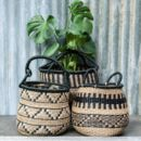 Zig Zag Or Striped Seagrass Basket
