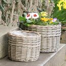 Set Of Two Round Woven Wicker Planters