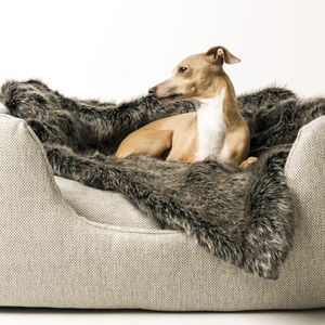 Charcoal Faux Fur Pet Blanket - dogs