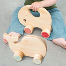 Wooden Eco Friendly Push Along Animal