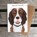 Liver And White Springer Spaniel Dog Card
