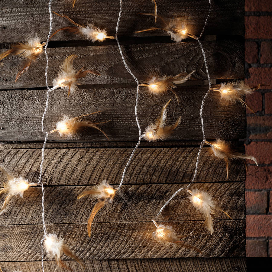 new arrival ccc3d 9897a 30 Woodland Feather Fairy Lights