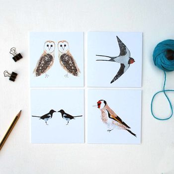 Pack Of Birds Greetings Cards