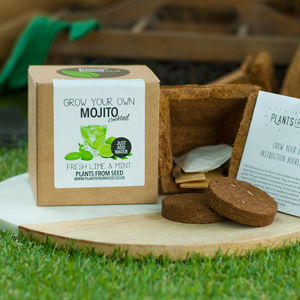 Grow Your Own Mojito Cocktail Plant Kit - gardening