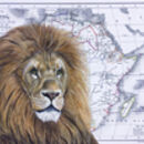 Lion And Map Of Africa Limited Edition Print