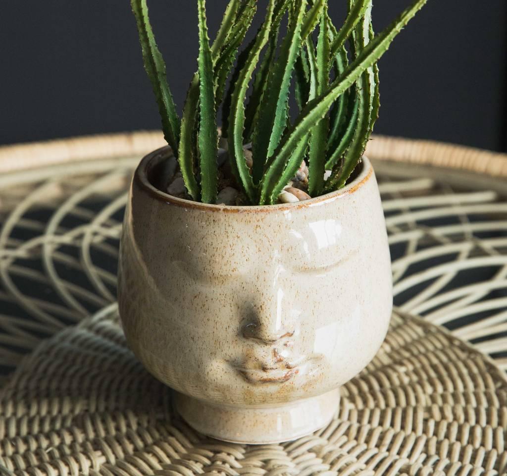 Amazing Face Plant Pot Part - 3: Face Plant Pot