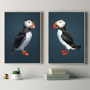 Pair Of Puffin Prints - paintings