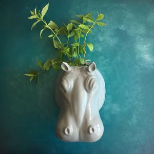 Hippo Wall Planter - tableware