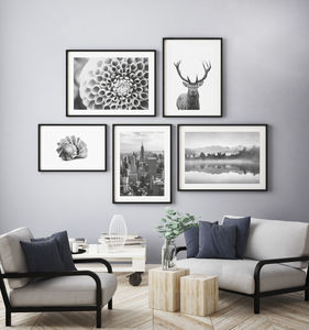 Selection Of Contemporary Black And White Prints - nature & landscape