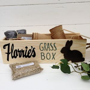 Personalised Rabbit Window Box With Grass Seeds - food, feeding & treats