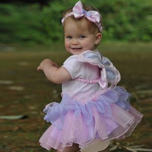 Baby Fairy Dress Up Set