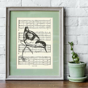 Avocet Wading Bird Screen Orint On Vintage Music Paper