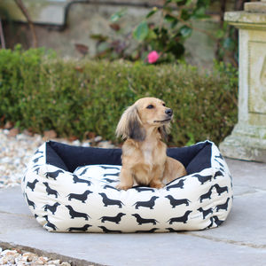Small Dachshund Dog Bed - dogs