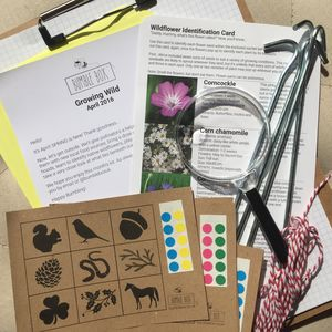 Family Activity Kit Three Month Subscription - subscription gifts