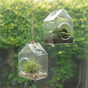 Hanging Glass House Terrarium - new in christmas