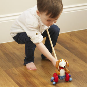 Wooden Dog Push Along Toy