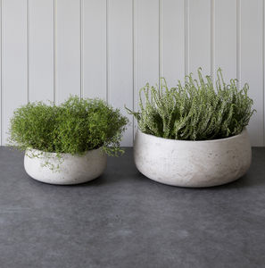 Set Of Two Cement Planters - pots & planters