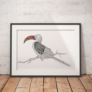 Hornbill African Animal Illustration And Pattern Print