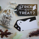 Trick Or Treat? Gift Bag + Tag
