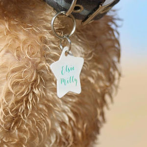 Personalised Name Pet Tag Star Shaped
