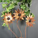 Set Of Three Copper Daisies